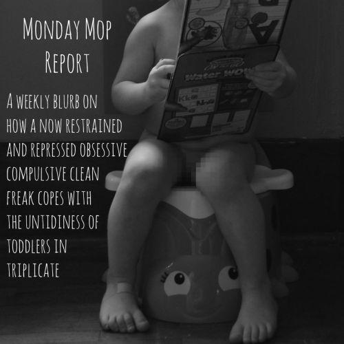 MondayMopReport2